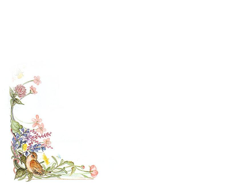 淘宝宝贝外衣图片素材——淘宝装修素材——赢得网