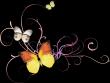 蝴蝶、金色花纹、梦幻纸鹤背景
